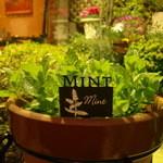 BAR INSIDE SATIE - 有機栽培のスペアミントです。
