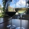 オステリア・オ・ジラソーレ - ドリンク写真:イタリアワインが豊富です。