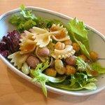 カフェ ソラノキ - 豆とショートパスタのサラダ(オーガニックランチ)