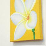 cafeロジウラのマタハリ春光乍洩 - 南国っぽい花の絵。