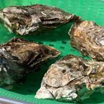 海の公園かき小屋 - 牡蠣はとにかく新鮮で大振りでした。
