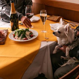 【ペット同伴可】ペットと麻布散策の後にイタリアンディナー