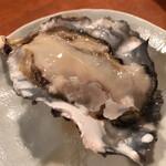 酒の魚 和海 - (*´﹃`*)