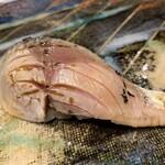 第三春美鮨 - 炙り〆鯖でもう同時対比