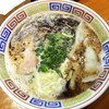 夢亀らーめん - 料理写真:水餃子らーめん 950円