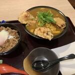 125734325 - 鶏天カレー(¥960)・ミニ肉玉丼(¥600)