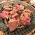 すすきのジンギスカン - 200217月 北海道 すすきのジンギスカン 5条店 もう少し焼こうか