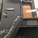 126058191 - この階段が凄い! 降りるの怖いよ(^^)