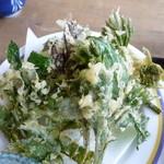 寿恵広食堂 - 山菜の天ぷら