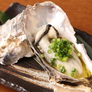 北海道厚岸産のブランド牡蠣480円~!