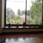 樹庵 - 店内からの景色