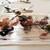 ウシマル - 料理写真:田鴫(タシギ) 小綬鶏(コジュケイ) 山鳥 炭火焼き トリュフ