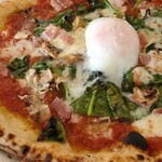 Pizzeria 244 -
