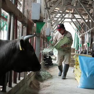 洗練された肥育技術により生産される「自社牧場産米沢牛」の旨味