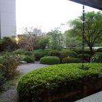 日本料理雲海 - 店内から望む中庭。手入れが行き届いています。