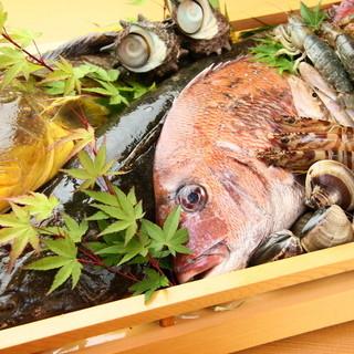 近海の旬魚貝が豊富に味わえます