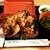 おが和 - 料理写真:おが和@人形町 やきとり重・ごはん大盛り・肉増し(1000円+0円+100円)