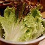 韓国伝統焼肉 カンホドン白丁 -