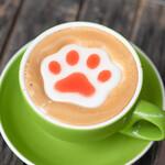 コーヒーエイト ウェロニカ - ドリンク写真: