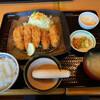 どんと  - 料理写真:広島産 かきフライ定食