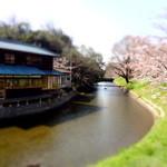 水辺のカフェ 三宅商店 酒津 - 2012