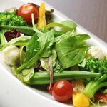 お野菜たっぷりのグリーンサラダ