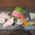 夢酒知花 - 鮮魚のお造り5種盛り合わせ