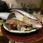 北ノ酒場 TACHIPPA - 本日の鮮魚