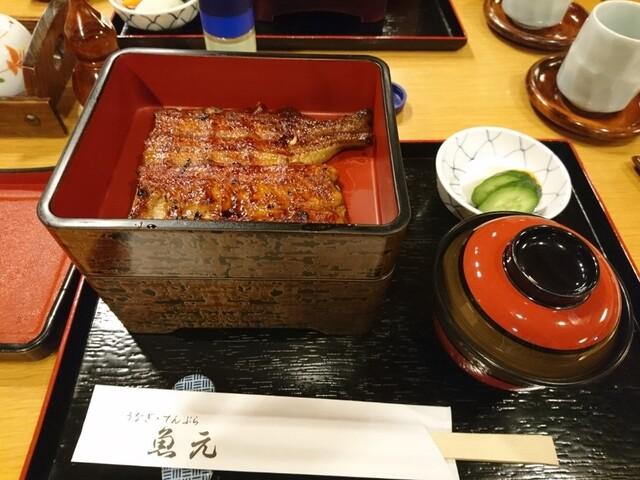 魚元の料理の写真