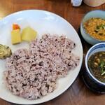 127667912 - 鶏ひき肉とナンコツのキーマカレーと豚ひき肉と大豆の黒ゴマほうれん草カレー2種盛り