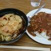 Ogusoba - 料理写真:天ぷらそば&ミニカレー 500円