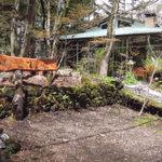 12800325 - 木洩れ陽のさす静かなレストラン