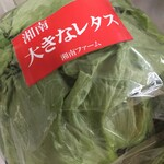 中井麺宿 やさい村コーナー - 料理写真:私の頭より大きい~(笑)