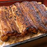 ぽんぽこ亭 - 料理写真:上うな重 3,150円(+税)鰻3分の2匹