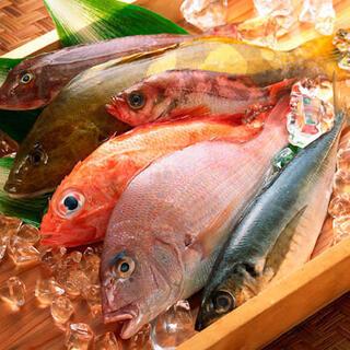 日本近海にて育まれた新鮮な朝〆鮮魚。四季折々の海鮮和食。