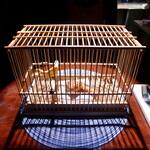 128319545 - 竹ひごで組み立てられた鳥カゴに、黄色い小鳥と、真ん中には… 手羽先(笑)。お品書きに記載のない一品