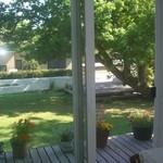カフェ木かげ - 中庭
