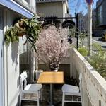 BISTRO INOCCHI - テラス席に桜♪
