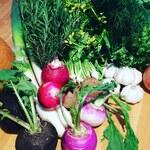大人の隠れ家ああばん - 広島地産地消の有機野菜