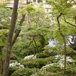 12856192 - はんべえ庭園