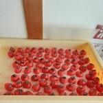 菊壽堂義信 - お菓子の梅干し作り中