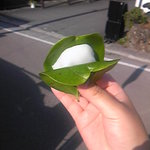 笑顔堂 - 料理写真:かしわ餅100円