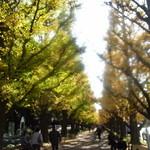 12940802 - 神宮外苑の銀杏並木