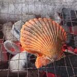 竹崎海産 - ヒオウギ貝