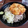 駅そば 大江戸そば - 料理写真:かき揚げ・ぶっかけそば。