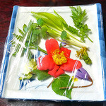 12957542 - 「早春のつみ草と山菜の天ぷら」のタネの見本(2012年5月)