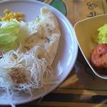 12973278 - 私がデザインした食べ放題メニュー サラダにナン、ガーリックライスにタンドリーチキン