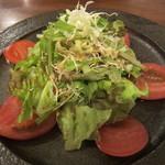 日と月 - 糸島野菜のサラダ