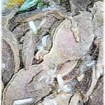 129856888 - 砂肝の和え物 テイクアウト