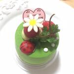129904323 - ピスタチオとグリオットのケーキ